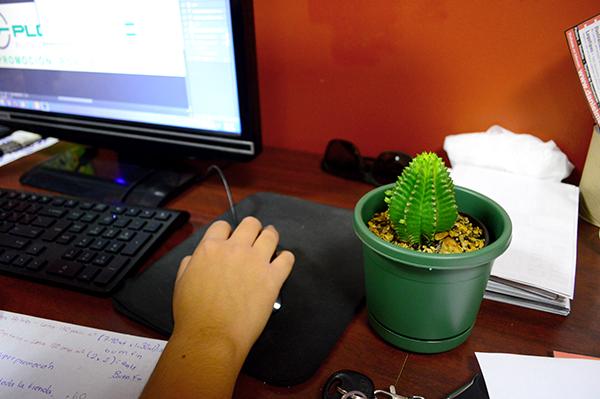 Cactus al lado de la computadora
