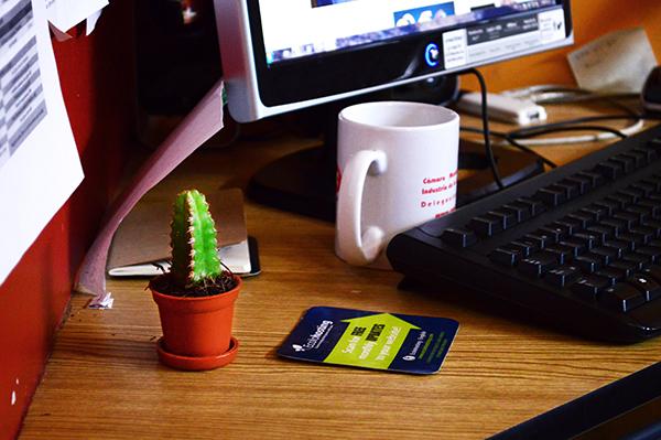 Cactus en el escritorio